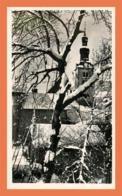 A719 / 241 74 - MEGEVE Clocher Du Village - Megève