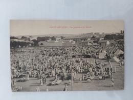 Saint-Arnaud. ( Vue Générale Et Le Marché) Le 24 05 1916.Algérie - Algeria