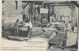 CPA  51  AU PAYS DU CHAMPAGNE  MAISON MERCIER  LES VENDANGES  LE PRESSURAGE - Epernay
