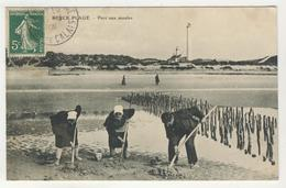 62 - Berck - Plage - Parc Aux Moules - Berck