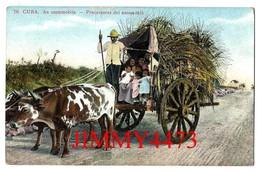 TARJETA POSTAL - CUBA - AN OXENMOBILE - PRECURSORES DEL AUTOMOBIL -  N° 76 - Scans Recto-Verso - Cuba