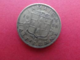 Jamaique  1/2  Penny  1955  Km 36 - Jamaica
