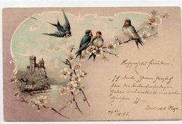 DC1748 - Motiv Motivkarte Vögel 1900 Blumen Kunst - Uccelli