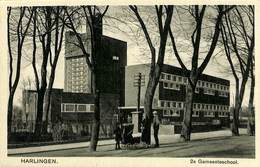 027 564 - CPA - Pays-Bas - Harlingen - 2e Gemeenteschool - Harlingen