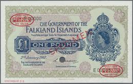 Falkland Islands / Falkland Inseln: The Government Of The Falkland Islands 1 Pound 1967 De La Rue SP - Falklandeilanden