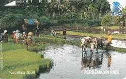 Indonesien Phonecard Tamura Persemaian Padi - Indonesië