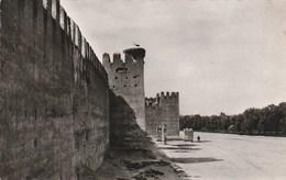 Carte Postale. Maroc. Taroudant. Remparts Du Marhaba. Etat Moyen. Taches. - Monuments