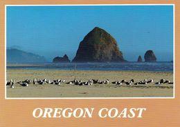 1 AK USA Oregon * Haystack Rock At Cannon Beach Of The Oregon Coast * - Etats-Unis