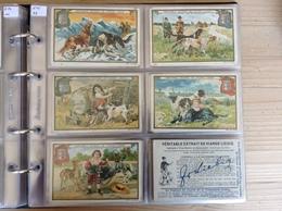 (1) Belgie, Frans, S615, Reeks Van 6, Hondenrassen. - Liebig