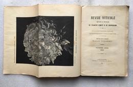 1898 - Revue Viticole Agricole Et Horticole De FRANCHE-COMTé & DE BOURGOGNE - Vuillermet - Franche-Comté