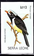 SIERRA LEONE (1988) Red-billed Shrike (Prionops Coniceps). Imperforate Proof. Scott No 979, Yvert No 902. - Sierra Leone (1961-...)