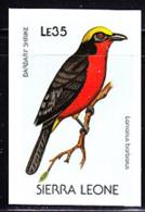 SIERRA LEONE (1988) Barbary Shrike (Lanianus Barbarus). Imperforate Proof. Scott No 981, Yvert No 904. - Sierra Leone (1961-...)