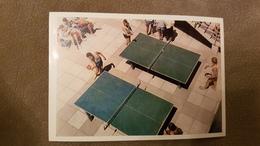 ARTEK. PIONEER CAMP (playing Table Tennis) 1969 - USSR - Ping Pong - Table Tennis