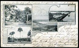 Early Postcard (1902) DAYTONA, Florida - Multiple Views With Magnolia Ave. - Daytona