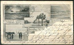 Early Postcard (1903) DAYTONA, Florida - Multiple Views With Boulevard - Daytona