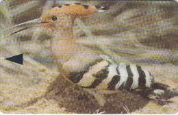 BAHRAIN(GPT) - Hoopoe, Bahrain Birds/Upopa Epops, CN : 46BAHC/B(normal 0), Used - Bahrein
