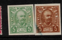 MONTENGRO 1902 5h, 5k Printers Waste? SG 104, 110 HM ZZ165 - Montenegro