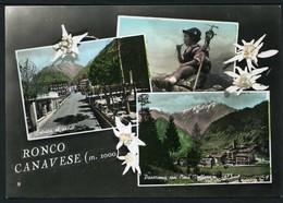Ronco Canavese - Viaggiata 1960 - Rif. 30204 - Italia