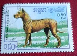 "Chien ""Dogue Allemand"" (Animaux) - Kampuchea - 1987 - Kampuchea"