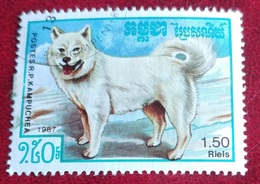 Chien (Animaux) - Kampuchea - 1987 - Kampuchea