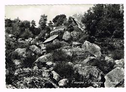 XW 1984 Carpegna (Pesaro Urbino) - Particolare Paradiso / Viaggiata 1957 - Other Cities