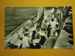 Les Sables D'Olonne Débarquement Des Sardines,Vendée 85,voyagée 1961,bel état Papier Collé Au Verso,envoi En Lettre écon - Sables D'Olonne
