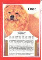 ASTROLOGIE Chien Cp Edit Gendre * Format 15 Cm X 10.5 Cm - Astrology