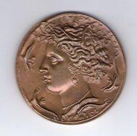 Médaille Antiquisante. Fédération Des Industries électriques Et électroniques - Firma's