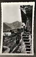 Val D' Illiez Monthey Paysage/Landleben Maultier - VS Valais