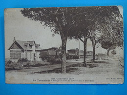 17) La Tremblade  - Braun N° 2204 - Passage Du Train De La Grève Sur Le Pont-noir - Année 1915 - EDIT - - La Tremblade