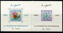 AFH541 Afghanistan 1963 Flower A Pair Of S/S Impref MNH - Afghanistan