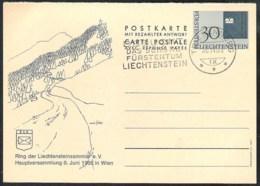 LIECHTENSTEIN 1965 Postal Stationery Mi P52 F With Triesenberg Cancellation - Stamped Stationery