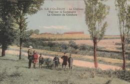 4-2----ile D Oleron-le Chateau-vue Sur La Campagne Le Chemin De Ceinture--carte Colorisée - Ile D'Oléron