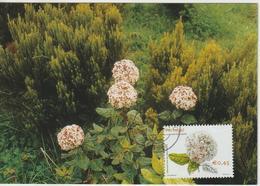 Acores Carte Maximum 2002 Fleurs 475 - Açores