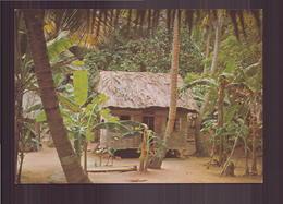 GUYANE FRANCAISE UN JOLI CARBET - Guyane