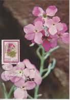 Madère Carte Maximum 1983 Fleurs 91 - Madère