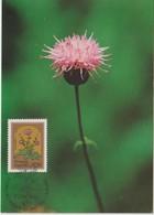Madère Carte Maximum 1983 Fleurs 93 - Madeira
