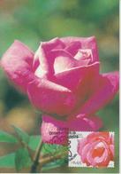 Madère Carte Maximum 2006 Fleurs 256 - Madeira