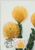 Madère Carte Maximum 2006 Fleurs 257 - Madeira