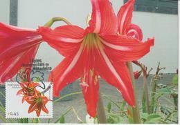 Madère Carte Maximum 2006 Fleurs 259 - Madeira