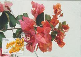 Madère Carte Maximum 2006 Fleurs 260 - Madeira