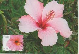 Madère Carte Maximum 2006 Fleurs 262 - Madeira
