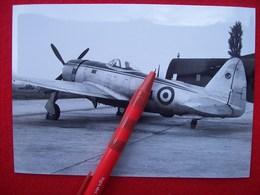 FOTOGRAFIA  AEREO  P 47 A.M.I.  VICENZA 1951 - Aviazione