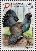 Belarus - 2020 - BirdLife International - Bird Of The Year - Western Сapercaillie - Mint Stamp - Belarus