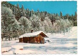 Motivo Invernale A Sappada - Italia