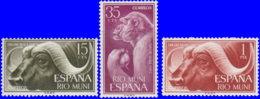 Rio Muni 1962. ~ 32 à 34* - Journée Du Timbre - Sonstige - Afrika