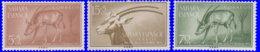 Sahara Espagnol 1955. ~ 110 à 12* - Journée Du Timbre Colonial - Sonstige - Afrika
