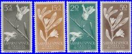 Sahara Espagnol 1956. ~ 113 à 16* - Pour Enfance Indigène - Sonstige - Afrika