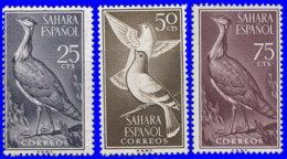 Sahara Espagnol 1961. ~ 167/69* - Oiseaux - Sonstige - Afrika