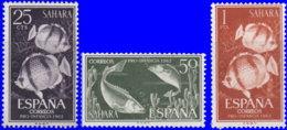 Sahara Espagnol 1962. ~ 195 à 97* - Pour Enfance Indigène - Sonstige - Afrika